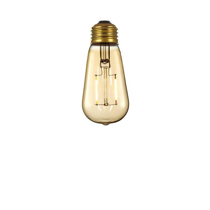 LED Edison Bulb (120V)