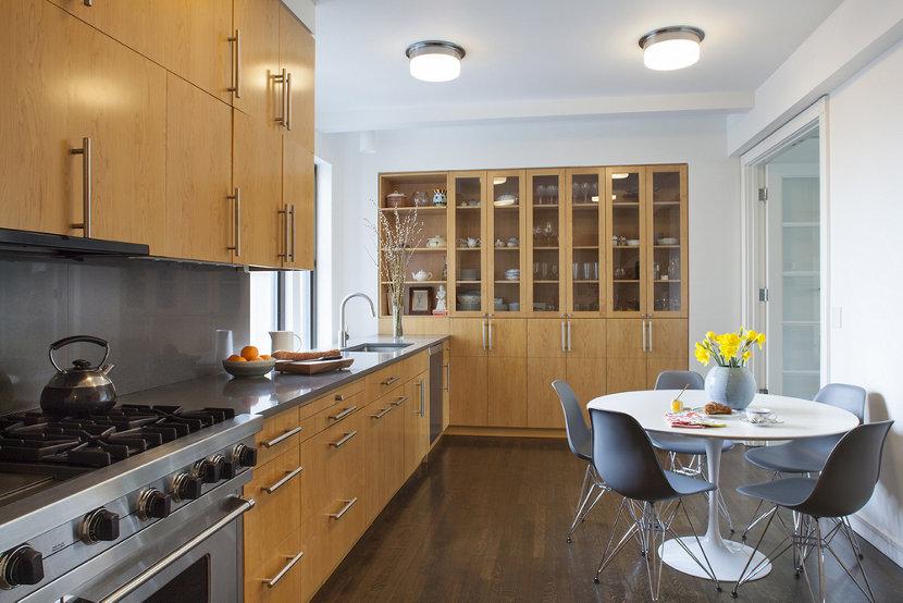 New York City apartment modern kitchen